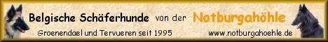 Click to Belgier